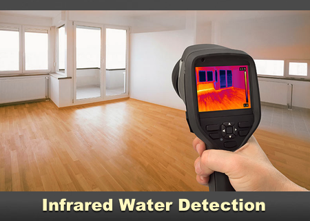 Infrared Mold Detection