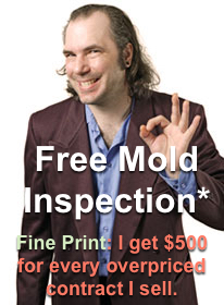 Free Mold Inspection Plainfield